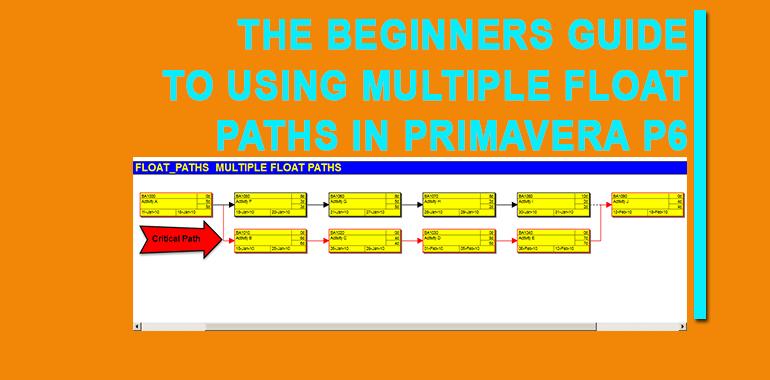 primavera tutorial archives primavera training blog rh primaveratrainingblog mssprojectsanalytics com Learning Coach Learning Guide Example
